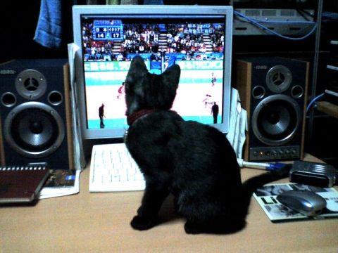 テレビを見るクロアン