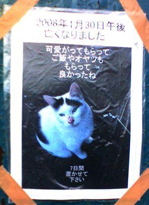 亡くなった猫さんを弔うポスター