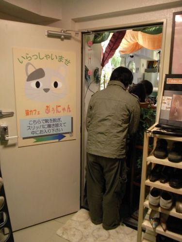猫カフェ『ぷぅにゃん』(2)-カフェ入り口