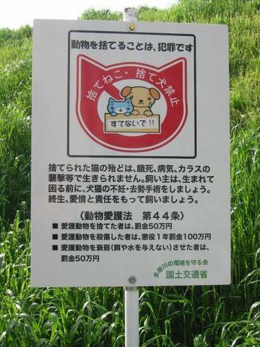 多摩川河川敷捨て猫禁止啓蒙看板