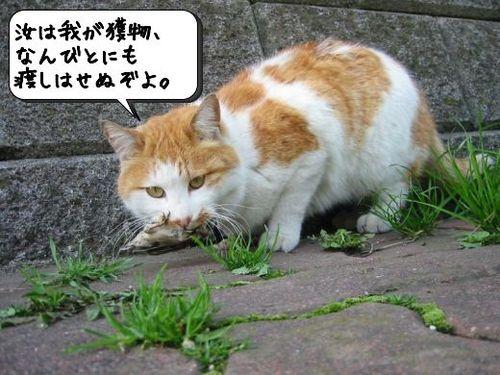 獲ったりぃぃぃ!